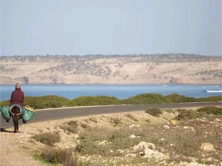 Stage au Maroc de Tai Chi Chuan avec Muriel Laurent