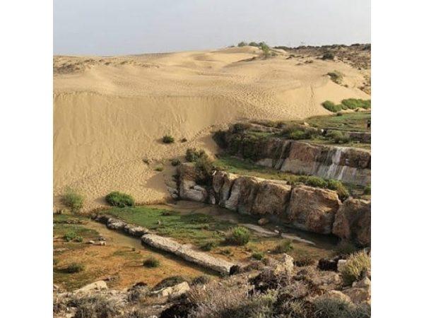Stage au Maroc Essaouira de Tai Chi Chuan avec Muriel Laurent