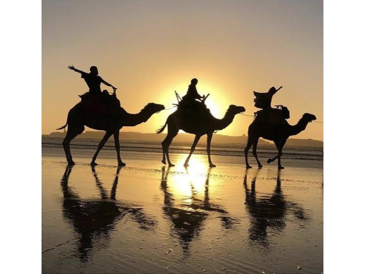 Voyages spirituels au Maroc Dojo Aloha