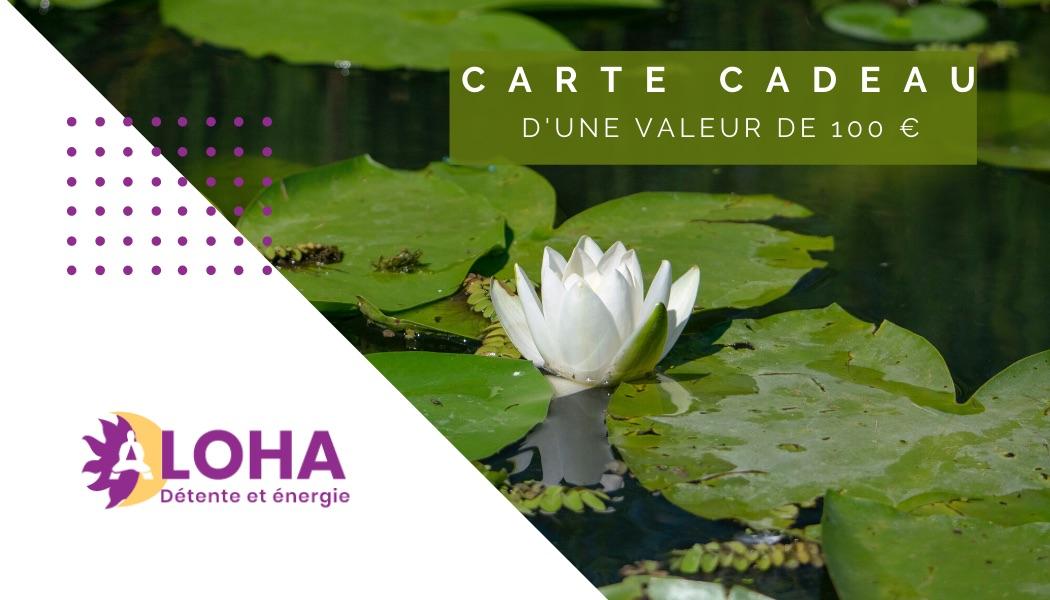 Carte Cadeau Dojo Aloha Provence 100€