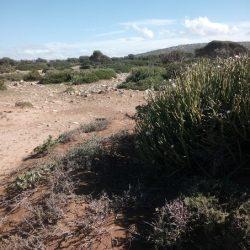 stage-maroc-dojoaloha20181116_132850