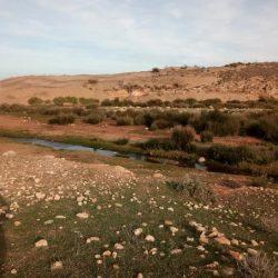 stage-maroc-dojoaloha20181117_095515